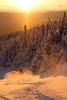 Alan Hammersmith - Green Mountains, Vermont